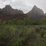 Pa'rus Trail - in the Zion Canyon