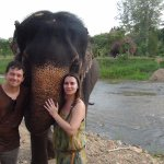 We can touch elephants and hug them closely.