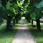 Go for a stroll after lunch in Flavigny
