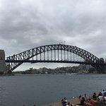 Beautiful Views of the Harbour Bridge