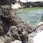 piscine naturelle en pierre de lave