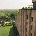 Rooftop dining with a view of Delhi's tree canopy