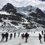 Athabasca Glacier Foto