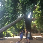 Fabulous adventure playground in battersea park
