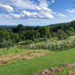 The view from Monticello