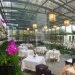 Majestic Lotus Flower conservartory