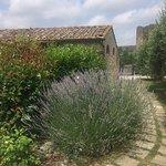 Photo of Hotel Monteriggioni