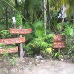 Eco lodge signage