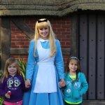 Alice in Wonderland (20 min Wait)