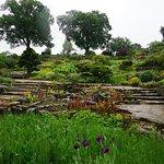 Photo of RHS Garden Wisley