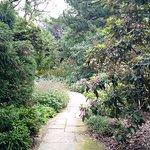 The botanical garden is gorgeous