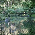 Bridge and water in the spectacular Nitobe Garden