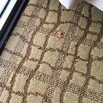 Foto de Doubletree by Hilton Hotel Birmingham