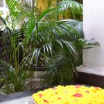 Photo of Royal Orchid Metropole Hotel