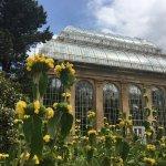 Foto de Royal Botanic Garden Edinburgh