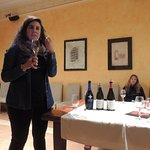 Learning about wines from Penedes.