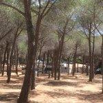 Photo of Camping Sa Prama