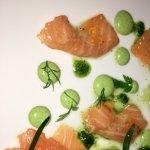 Salmon curado en casa