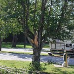 Trees not maintained, parking spots too small, streets have trucks in the way hauling trailers.
