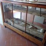 Photo of Franciscan Missionary Museum - Convento di San Francesco