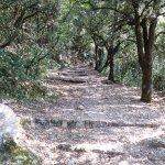 Percorso Via Francigena di San Francesco