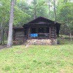 Cabin 4.