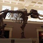 Photo de Buffalo Museum of Science