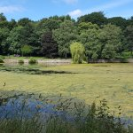 A beautiful & relacing place, great for a family walk