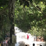 Foto de Dunn's River Falls and Park