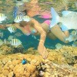 Coral Beach Foto