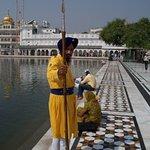 Foto di Tempio d'Oro - Hari Mandir
