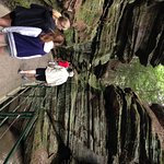 Upper Dells Boat Tour land excurstion through Witches Gultch