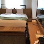 HOTEL MYSTAYS PREMIER 濱松町照片