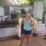 Holding a python!