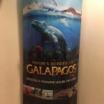 Galapagos 3D Movie