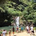 Waimea Falls. Water was great for swimming. Life guards & Life jackets provided for all swimmers