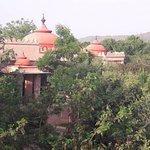 Foto de Tree of Life Resort & Spa Jaipur