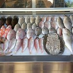 Freshly selected fish from the Saida sea.