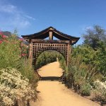 Foto di Meditation Mount
