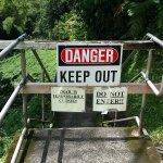 Akaka Falls State Park Foto
