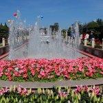 Foto di Dalat Flower Park