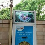 Siddhi vinayak1_large.jpg