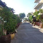 Foto de Hotel Aristea