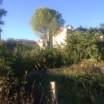 Bild från La Santoline