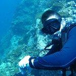 Photo de CSI: SAMUI Dive School