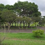 Photo of Parque La Sabana
