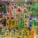 Our gin collection now totals over 200
