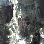vue sur les gorges