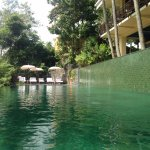 The hotel infinity pool