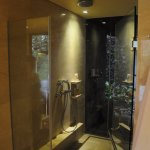 Shower (both inside and outside) in premiere valley-pool villa